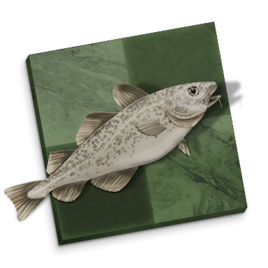 Stockfish 10 DGT Pi (Download)