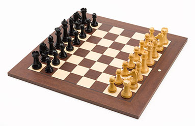 Karrikaturen Der Schachkalender 2018 Eine Schachkarriere mit Schachpartien