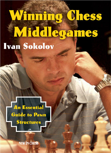 Winning Chess Middlegames